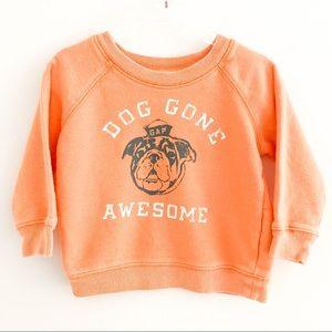 Baby Gap Orange Bulldog Sweatshirt Sz 12-18M